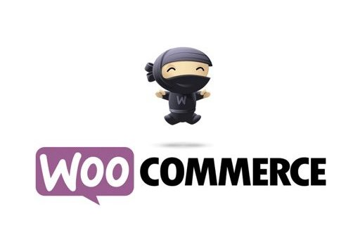 WooCommerce custom development and integration